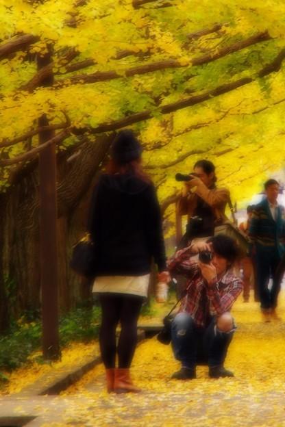 素敵な彼女をモデルに。。昭和記念公園20131109