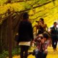 写真: 素敵な彼女をモデルに。。昭和記念公園20131109