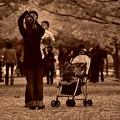 は~い。。こっち向いてね~ 昭和記念公園のある風景