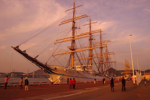 Photos: 公開準備中の夕暮れの海王丸・・門司港