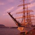 マジックアワーに染まる関門海峡と日本丸・・