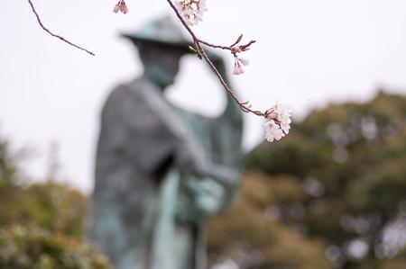 2013年春の河村瑞賢公園・2