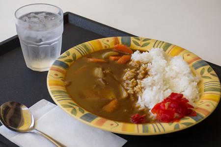 野菜カレー(道の駅・愛彩ランド【大阪】)