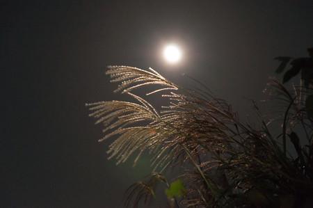 生石高原の月夜