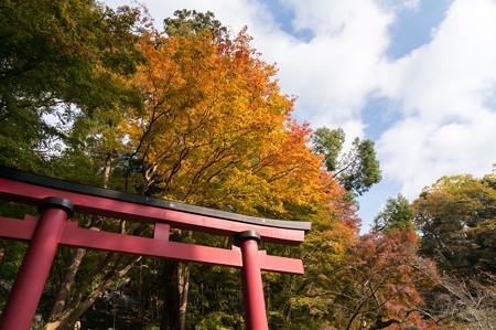 談山神社の紅葉・2013-1