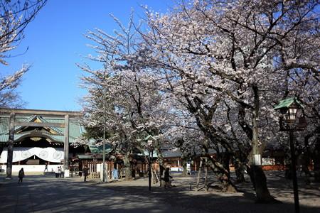 20130326-074122 靖国神社