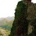 写真: 秋の山寺-納経堂
