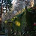 写真: 山寺の風景
