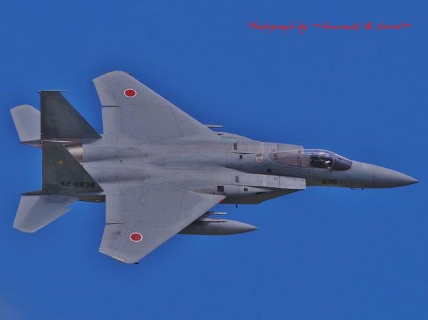 三沢基地航空祭 F-15J イーグル