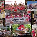 Photos: 東北六魂祭 東京へ