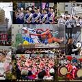 Photos: 東北六魂祭 in TOKYO SHINTORA MATSURI 2016.11.20