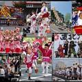 Photos: 「東北絆まつり」へ H29.6.10-11