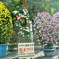 Photos: 20121116_030