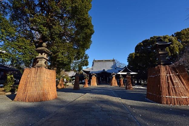 雪囲いのあるお寺