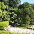 写真: 中院の庭