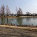 写真: 川越水上公園01