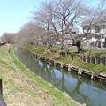 新河岸川05