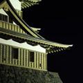 写真: 高島城と月 ~諏訪湖~