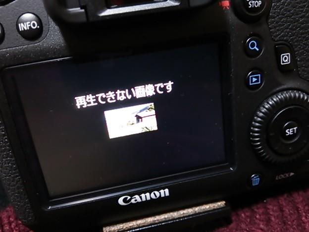 写真: DSC_0001