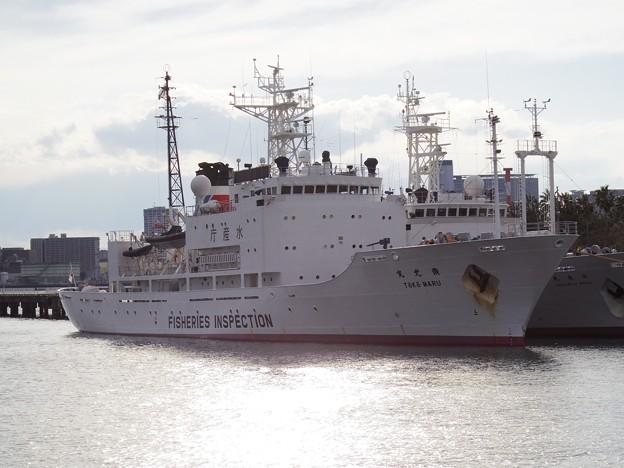 水産庁の船
