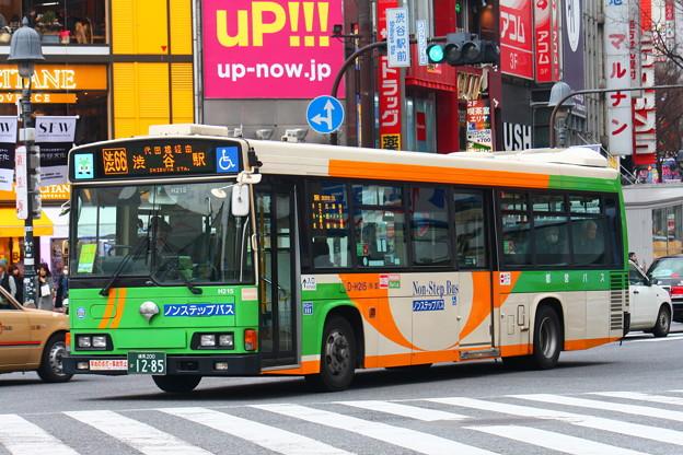 D-H215 渋66
