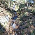 久々に流れている猩々池の滝