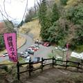 樽見の大ザクラ登山口駐車場