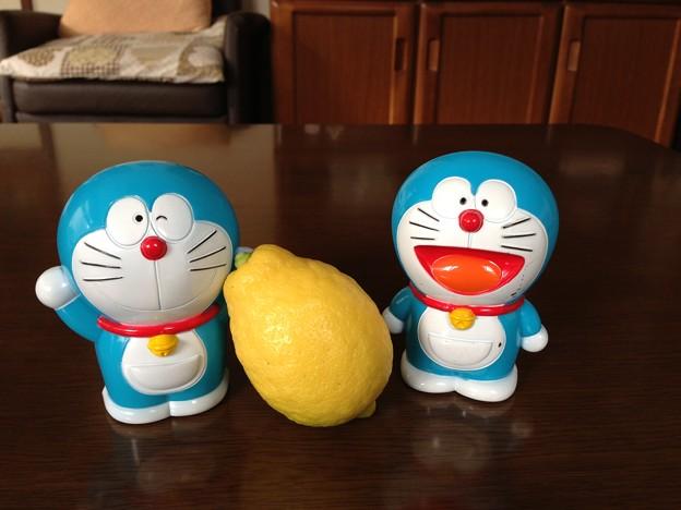 青狸 to レモン