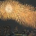 東京湾大華火祭4