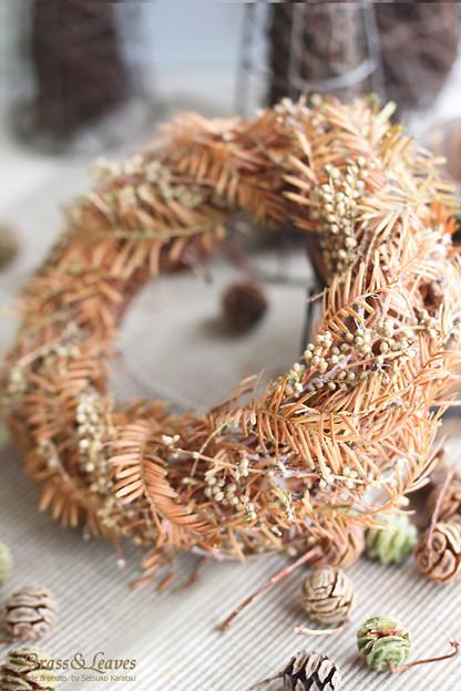 メタセコイアの落ち葉のリース