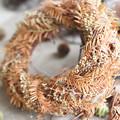 Photos: メタセコイアの落ち葉のリース