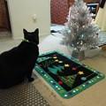 Photos: Ekkun&ChristmasMat-Dec2012