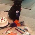 Photos: Happy 15th Birthday!