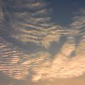 写真: 夕やけ雲