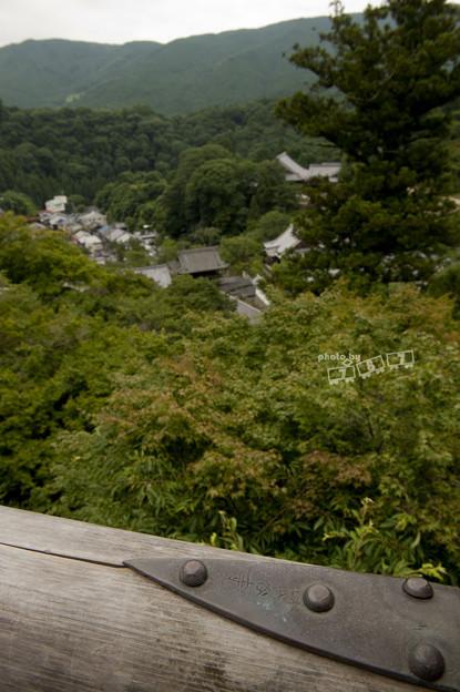 夏の奈良_015L