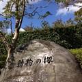 Photos: 大空