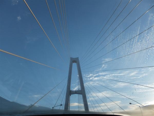 サンルーフのおかげで斜張橋の放射線が綺麗に見える