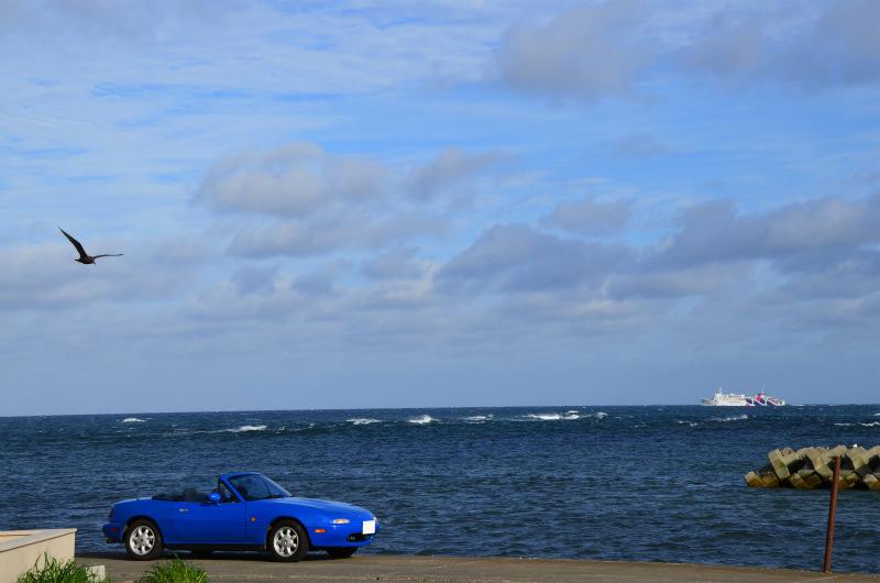 岬の先端では北の海を行く客船と海鳥が出迎えてくれました。