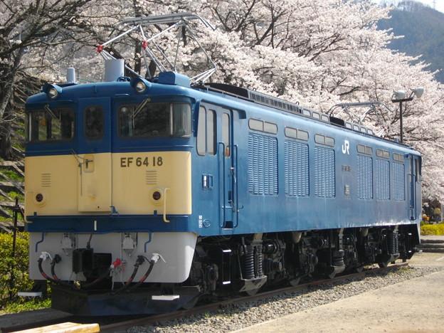 IMGP1342