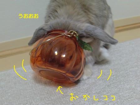ハロウィン8