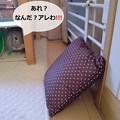 Photos: あ2