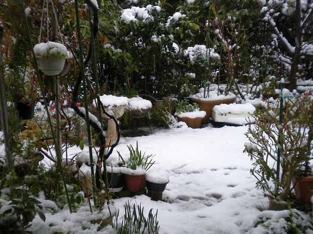 20130113_1514_snow_yokosuka_west