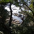 Photos: arasakikouen14
