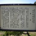 Photos: 横須賀_立石公園_秋谷海岸15
