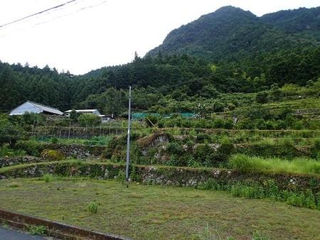三重 棚田の風景