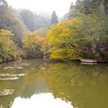 宝生寺の紅葉♪