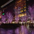 Photos: 桜咲く(^0^)
