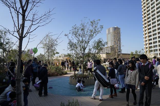 GRAND TREE開店日 20141122