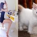 写真: 猫族度 測定