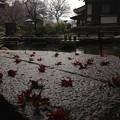 Photos: 鎮国寺2013